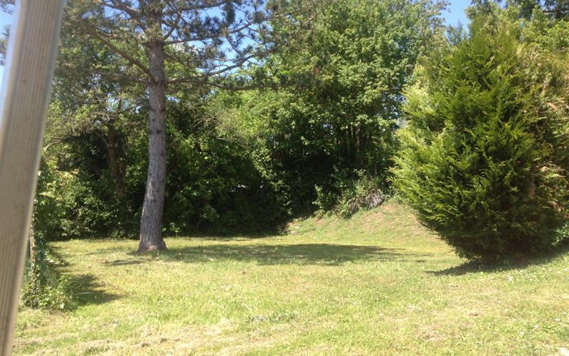 Phto parc étendue herbe