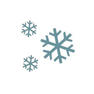 Icone hivernage