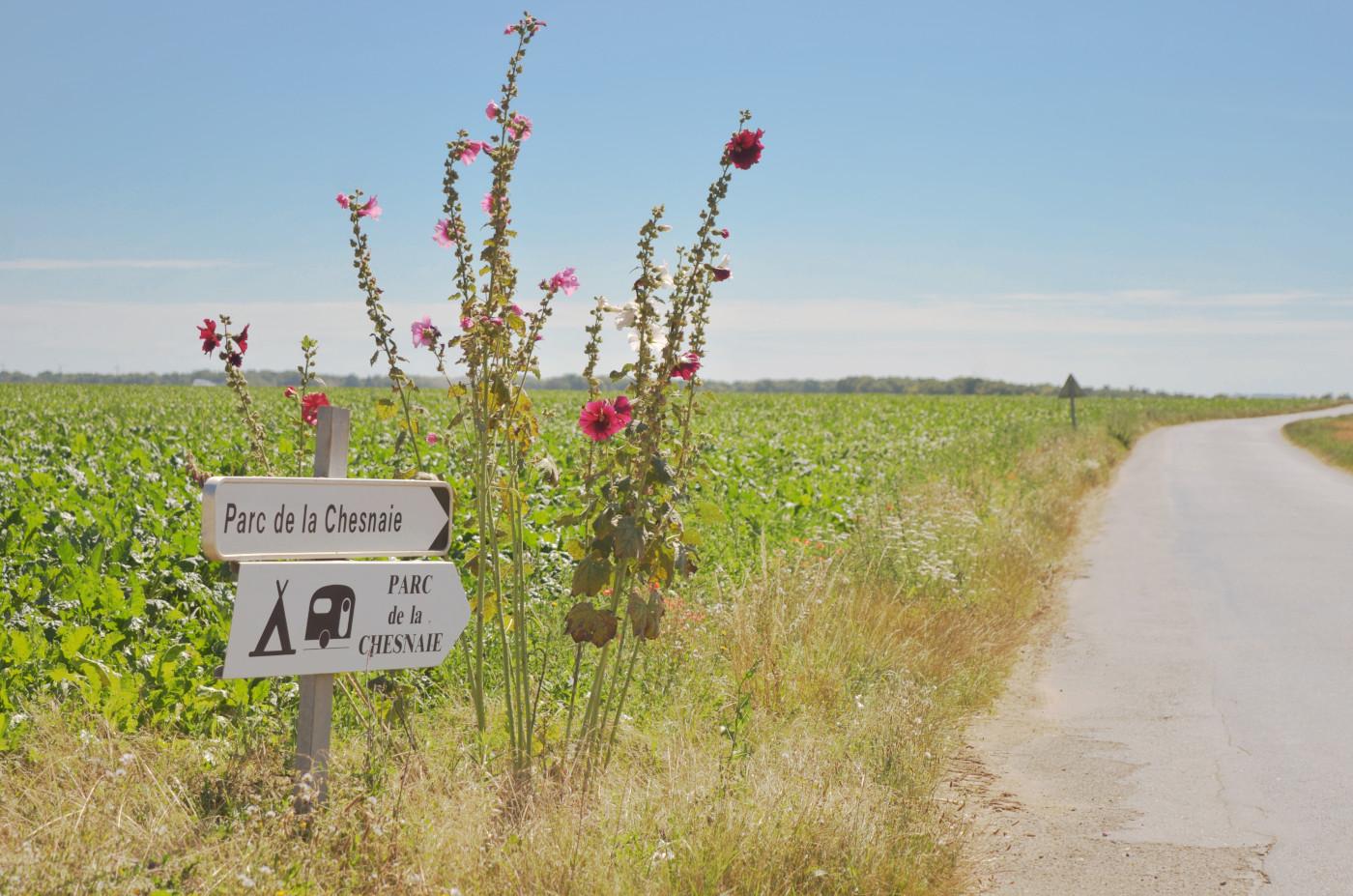 photo panneaux de direction du parc