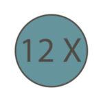 icone paiement 12 fois